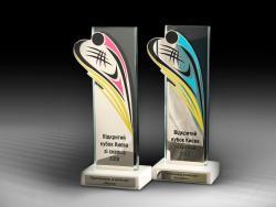 Награда Чемпионат Киева по сквошу (С01)