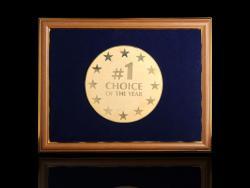 Диплом Choice of the year
